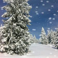 snow greek app